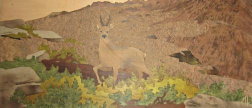 Chevreuil, bureau de chasse.